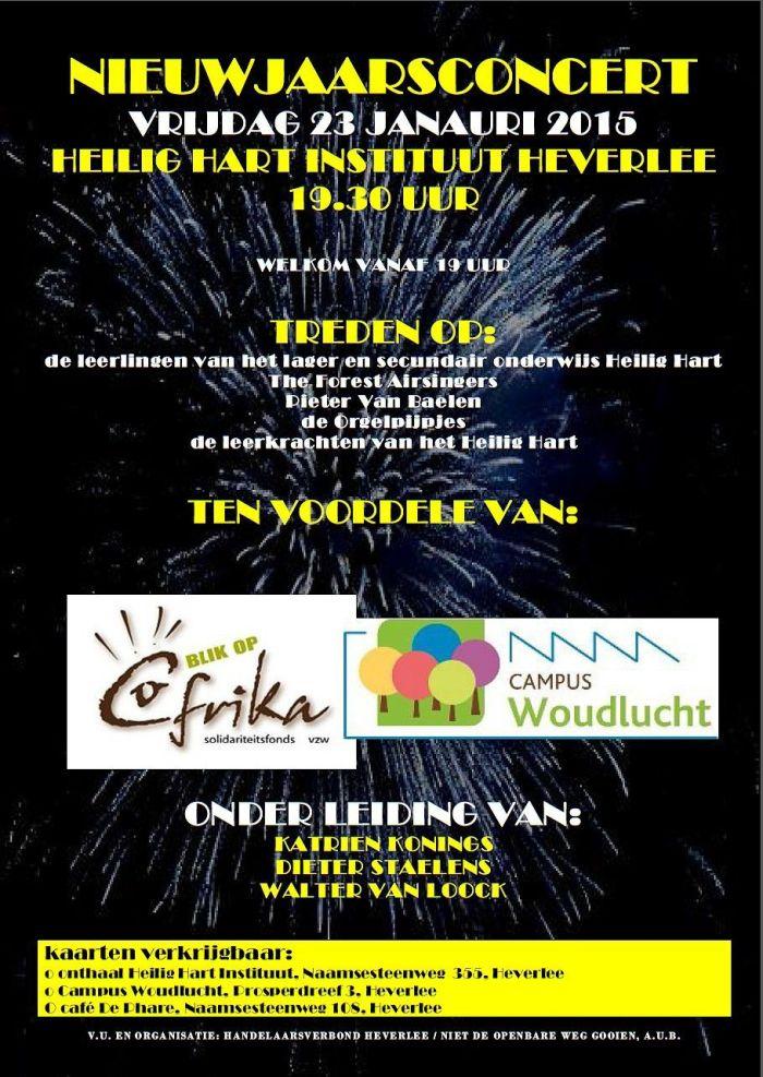 Flyer concert jan 2015